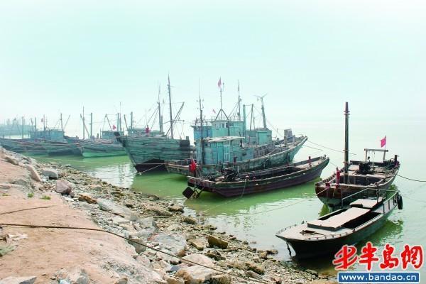 而中国海洋大学的陈大刚教授认为,莱州湾乃至渤海湾渔业资源的衰退是
